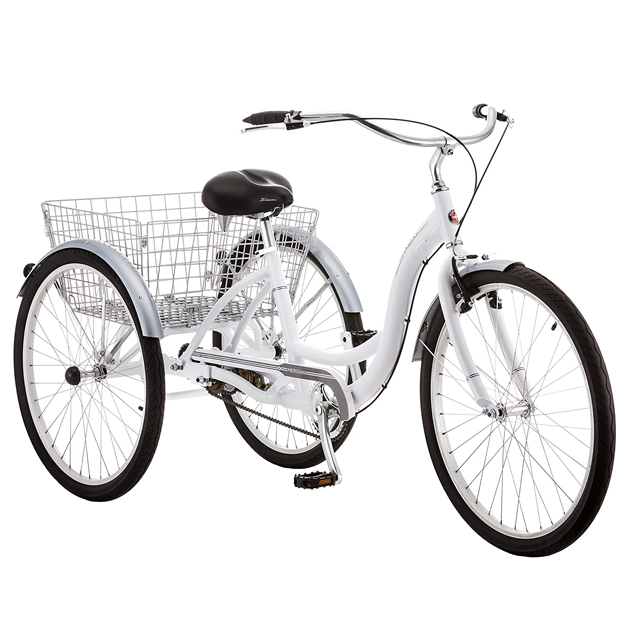 tricycle for adults top 1